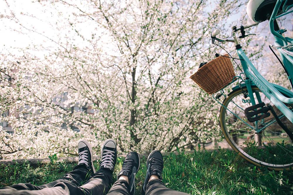 kalendarz pylenia dla alergików na wiosnę